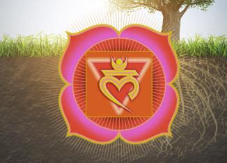 Muladhara, il primo chakra
