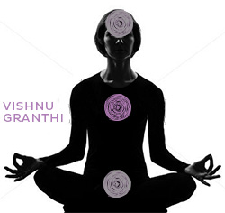 Vishnu Granthi