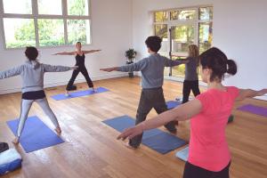 Yoga Integrale: lo yoga è geometria! Ma è anche integrazione di attività e benessere fisico, concentrazione della mente, rilassamento e cura dello spirito.
