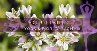 Yoga e Fiori di Bach: l'equilibrio