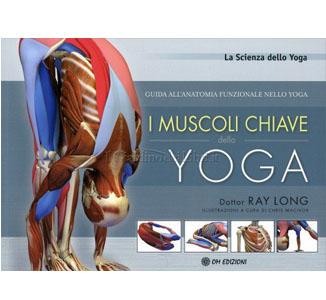 muscolichiaveyogaok