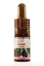 beech-5-ml_42650