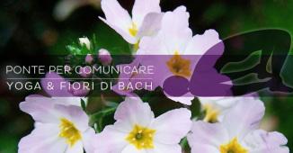 Yoga e Fiori di Bach: per comunicare