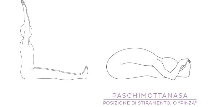 """Paschimottanasana, posizione di stiramento posteriore, o """"pinza"""""""
