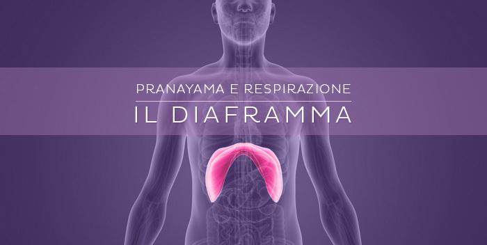 il diaframma e la respirazione diaframmatica