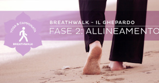 Breathwalk, il Ghepardo: fase 2, Allineamento