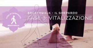 Breathwalk: il ghepardo - Vitalizzazione