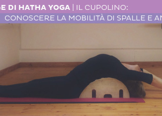 Stage Hatha Yoga