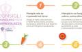 Lo yoga e il cibo: mangiare con consapevolezza
