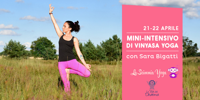 Vinyasa Yoga con Sara Bigatti a Cesena
