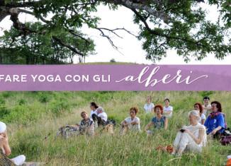 Fare yoga con gli alberi