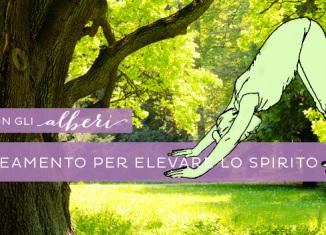 Yoga con gli alberi: una sequenza per allineamento e radicamento