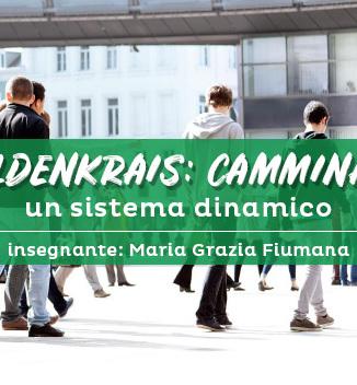 Seminario di Feldenkrais: Camminare